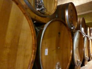 Italy Piedmont - Alba Prunotto Barrel Room 1 - 11-13