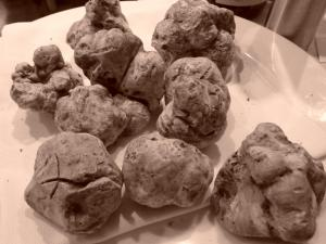 Italy Piedmont - Alba Tartufo Bianco Black and White - 11-10
