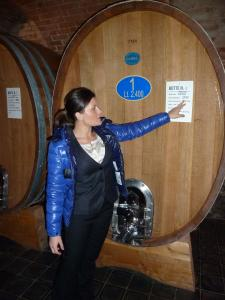 Italy Piedmont - Barbaresco Gaja Gaia in Cellar - 11-10